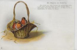 AK 0120  Die Vögel Im Frühling - Künstlerkarte Um 1900-1910 - Vögel