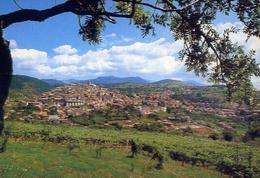 Fiuggi Terme - Panorama - 270 - Formato Grande Non Viaggiata – E 10 - Frosinone