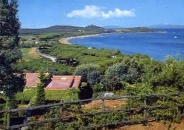 Punta Ala - Grosseto - Il Golfo - Panorama - Formato Grande Viaggiata – E 10 - Grosseto