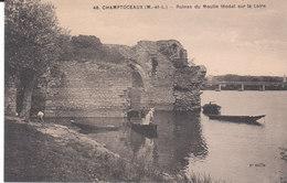 CPA CHAMPTOCEAUX (49) RUINES DU MOULIN FEODAL SUR LA LOIRE - ANIMEE - Champtoceaux
