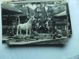 Indonesië Indonesia  Bali ? Photo Postcard People And Animals - Indonesië