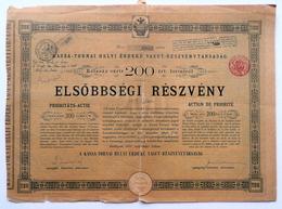 Lot D'Actions Société Anonyme Du Chemin De Fer D'intérêt Local Kassa-Torna (Hongrie) 1893 Vendus En 1921 - Actions & Titres