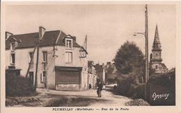 Carte Postale Ancienne De Plumeliau  Rue De La Poste - France