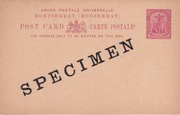 Entier Postal -  Monserrat - One Penny Red / Rouge  - SPECIMEN!!! - Montserrat