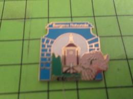 210a Pins Pin's / Rare & Belle Qualité THEME VILLES / BERGERIE NATIONALE DE RAMBOUILLET - Cities