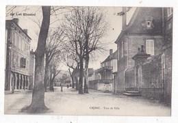 Carte Postale Carmaux L' Avenue De La Gare - Carmaux