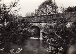 DPT 61 MONCEAU Pont Sur La Commanche - Autres Communes