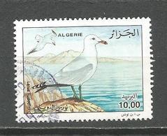 Mn Algeria 1999. Birds,used Stamp - Seagulls
