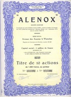 Titre De 10 Actions De S.A Alenox Waterloo - Actions & Titres