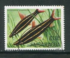 NICARAGUA- Y&T N°1160C- Oblitéré (poisson) - Nicaragua