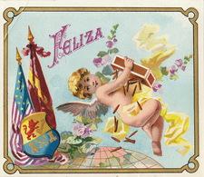 1893-1894  étiquette Boite à Cigare Havane Ange Cherubin - Etiketten