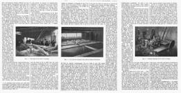 LE ROUISSAGE Du LIN Par FERMENTATION BACILLAIRE   1918 - Sciences & Technique