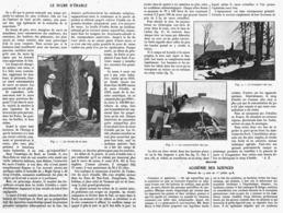 LE SUCRE D'ERABLE  1918 - Technical