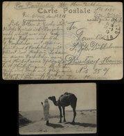 S4966 Algerien Deutsche Kriegsgefangenen Postkarte Mit Zensur: Gebraucht Französisches Gefangenen Lager 1128 Tizi Ouzo - Allemagne