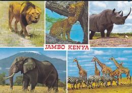 KENYA---jambo-kenya--multi-vues--voir 2 Scans - Kenya