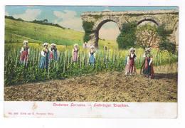 LOTHRINGER TRACHTEN  COSTUMES LORAINS - France