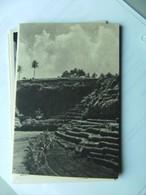 Indonesië Indonesia Bali Rice Terraces Susunan Sawah Dan Ladang Menghiasi Alam - Indonesië