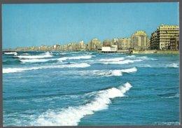 CP AL 99 Photo By Dino Sassi-ALEXANDRIA-The Corniche General View - Alexandrie