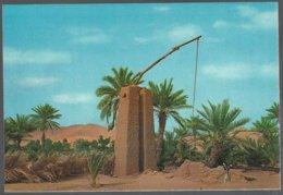 CP REAR B.17-ALGERIE -Puits Dans Le Sud Saharien - Algérie