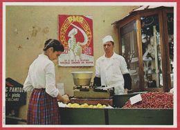 Ménagère Au Marché. Roumanie. Encyclopédie De 1970. - Vecchi Documenti