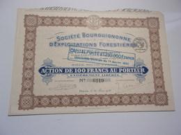 BOURGUIGNONNE D'EXPLOITATIONS FORESTIERES (1920) - Acciones & Títulos