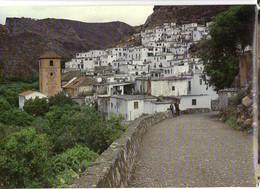 CP Espagne - Almeria - Elaine Metzler - N° 16 - Color. No Viajado - Almería