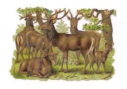 DECOUPI  BICHES Et CERFS - - Animals
