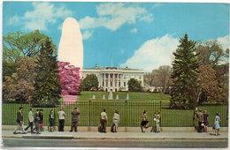 WASHINGTON - The White House - Défaut D' Imprimerie Arbre Et Ciel A Gauche  (110916) - Ansichtskarten
