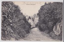 BOISMONT - Route De Pierrepont - Francia