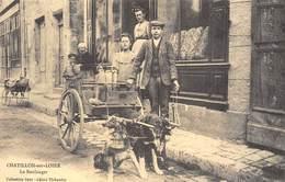 Chatillon-sur-Loire - Le Boulanger - Attelage De Chiens - Cecodi N'960 - Chatillon Sur Loire