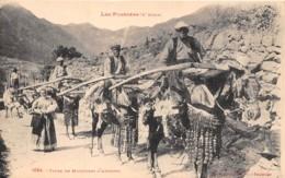 Andorre / 01 - Types De Muletiers - Andorre