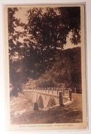 EMILIA ROMAGNA - PARMA - STRADA FORESTALE BOSCO LAGDEI - PONTE DEL COGNO Formato Piccolo - Viaggiata Nel 1929 - Condizio - Parma