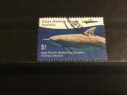 Cocoseilanden - Dolfijnen (1) 2016 - Cocoseilanden