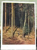 Shishkin. Pine Forest USSR Postcard 1950 Tallin - Russia