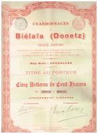 Ancienne Action - Charbonnages De Biélaïa (Donetz) - Titre De 1895 - Actions N°s 16811 à 16815 - Russie