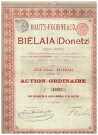 Ancienne Action - Hauts-Fourneaux De Biélaïa (Donetz) - Titre De 1899 - Titre N° 13522 - Russie