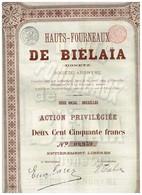 Ancienne Action - Hauts-Fourneaux De Biélaïa (Donetz) - Titre De 1899 - Titre N° 09.959 - Russie