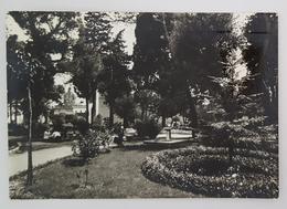 ALTAMURA (BARI) - Villa Comunale  Vg - Altamura