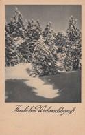 HERZLICHEN WEIHNACHTSGRUSS. CIRCULEE 1931 HEIDELBERG A BAYERN. AR & CO, BANDELETA PARLANTE GERMANY - BLEUP - Kerstmis