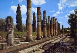 Aquileia - Udine - Il Foro Romano - 329-43- Formato Grande Non Viaggiata – E 10 - Udine