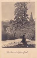 HERSLICHE NEUJAHRSGRUSSE!. POSTKARTEN INDUSTRIE A G. CIRCULEE 1930 BANDELETTA PARLANTE - BLEUP - Nieuwjaar