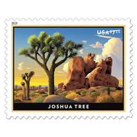 USA Stamps 2019. Joshua Three. MNH ** Priority Postage Stamp. - Ungebraucht