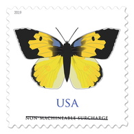 USA Stamps 2019. California Butterfly With A Dog Head (for Square Envelopes). - Unused Stamps