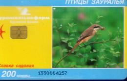 Russia Chip Cards, Bird , 200u (1pcs) - Russland
