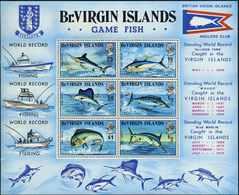 VIRGIN ISLAND 1972 Bl.1 Postfrisch (700660) - Iles Vièrges Britanniques