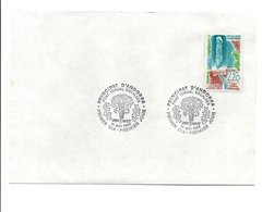 ANDORRE FDC 1988 FONTAINE THERMALE - FDC
