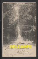 DD / 70 HAUTE SAÔNE / VESOUL / PASSERELLE MEILHER / 1902 - Vesoul