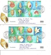 Coquillages ( 2 FDC De Malte De 2003 à Voir) - Coquillages