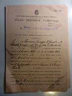 """Documento """"R. CAPITANERIA DI PORTO VIAREGGIO - LICENZA CONCESSIONE BALNEARE""""  24 Ottobre 1944 - Ex-libris"""