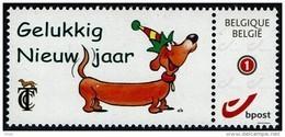 Belgie - TCC - Gelukkig Nieuwjaar - Teckel Dackel Dachshund - België